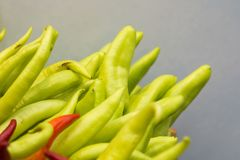 Chillies and Peppers of different varieties stock photo