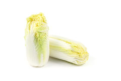 Close up Chinese cabbage. On white background Royalty Free Stock Image