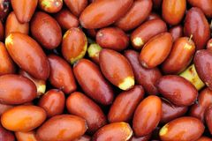 Chinese dates in market. Close up of chinese dates Royalty Free Stock Images