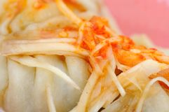 Close up of Chinese dumplings Royalty Free Stock Image