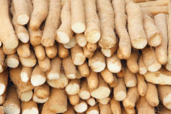 Chinese yam Stock Images