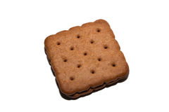 Close up chocolate biscuit Royalty Free Stock Photos