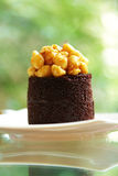 Close up chocolate cake ang sweet nut Royalty Free Stock Photo