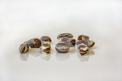 Close up of chocolate candy seafood. White and chocolate chocolate, soft defoic in depth. royalty free stock photo