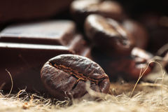 Close up of chocolate and coffee beans Royalty Free Stock Photos