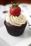 Close up chocolate cup cake and strawberry Stock Image