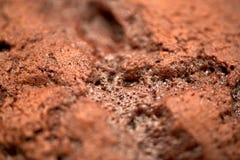 Close up of chocolate cupcake Royalty Free Stock Photo