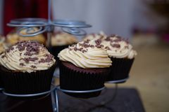 Cupcakes. Close up of chocolate cupcakes on display Stock Images
