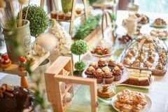 Close up of chocolate mini cupcakes Royalty Free Stock Photos