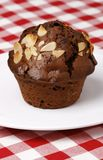 Close-up of chocolate muffin stock photos