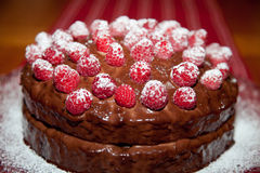 Close Up of a Chocolate Raspberry Cake Royalty Free Stock Photos