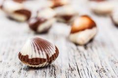 Chocolate seashells Stock Images