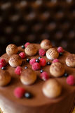 Close-up of a chocolate tiramisu cake with cocoa powder, raspberries, and blackcurrants on a dark blurred background. Royalty Free Stock Photo