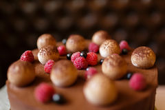 Close-up of a chocolate tiramisu cake with cocoa powder, raspberries, and blackcurrants on a dark blurred background. Top view of a dessert cake from mascarpone Royalty Free Stock Photo