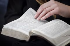 Woman Reading and Study the Bible Stock Image