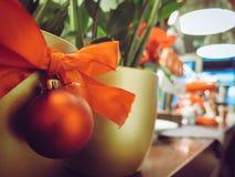 Close-up of Christmas Plant Stock Photos