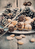 Close up of Christmas Tray with Pine cones and Nuts Royalty Free Stock Photo