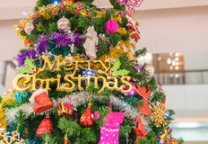 close-up on christmas tree Stock Images