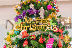 close-up on christmas tree Stock Photography