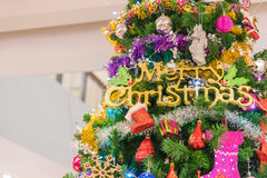 Close-up on christmas tree. Close-up on a christmas tree Stock Image