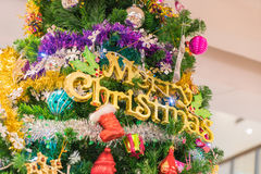 Close-up on christmas tree. Close-up on a christmas tree Royalty Free Stock Photos