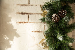 Close up of the Christmas tree branches Royalty Free Stock Photos