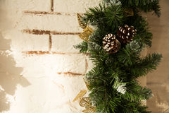 Close up of the Christmas tree branches Stock Photo