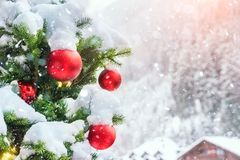 Close-up christmas tree with colorful decoration ball , snowflakes and snow on spruce branches during snowfall in winter outdoors