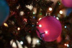 Close-up of Christmas Tree at Night Stock Photo