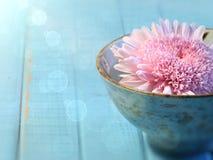 Close up of chrysanthemum flower in bowl stock photo