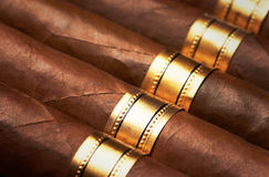Close up of cigars Stock Images