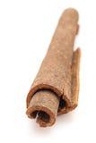Close up of Cinnamon stick. Stock Photos