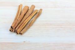 Close up cinnamon stick Stock Images