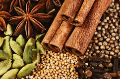 Close-up cinnamon sticks, stars anise, cardamom, clove, coriande Royalty Free Stock Image