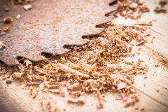 Close up of circular saw and saw dust Royalty Free Stock Photography