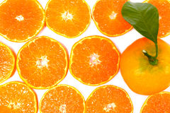 Close-up citrus-fruit of orange slices on white background. Stock Image