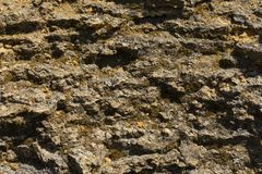 Close-up cliff surface with flakes for background. Cliff face.The texture and texture of rock stone on the surface of the rock stock images