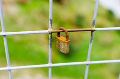 Close Up Closed Padlock Locked onto a Square Fence with Shallow Stock Images
