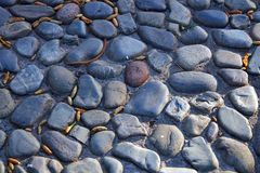 Close up of a cobbled road. Close up of the cobbles of a cobbled stone road Stock Photo
