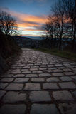 Close-up of cobblestones in sunset Stock Images