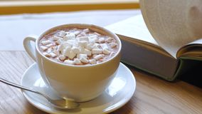 Close up of cocoa cup. Ung woman drink cocoa with marshmallows and read book stock video footage