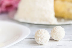 Close-up Coconut Candies Royalty Free Stock Photography
