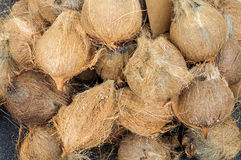 Close-up of coconuts on. The market Royalty Free Stock Photography