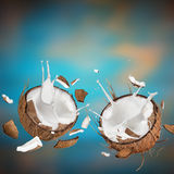 Close-up of a coconuts with milk splash. Royalty Free Stock Photography