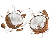 Close-up of a coconuts with milk splash. Royalty Free Stock Photo