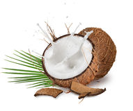 Close-up of a coconuts with milk splash on white background Royalty Free Stock Image