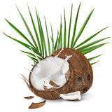 Close-up of a coconuts with milk splash on white background Stock Photography