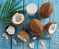 Close up of a coconuts Royalty Free Stock Images