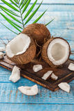 Close up of a coconuts Stock Images