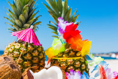 Close up of coconuts and pineapples Stock Images